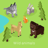 Wild Animal Set Isometric 3d Design Royalty Free Stock Photos