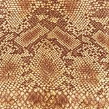 Wild animal skin pattern Royalty Free Stock Photography