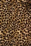 Wild animal skin pattern Royalty Free Stock Photos