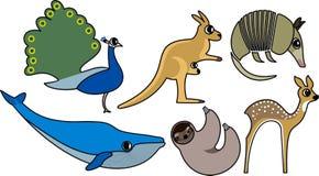 Wild Animal Vector. Wild Animal Cartoon Illustration Series 7 Royalty Free Stock Images