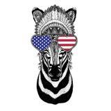 Zebra Horse Wild animal wearing indian hat Headdress. Wild animal wearing indian hat Headdress with feathers Boho ethnic image Tribal illustraton Stock Image