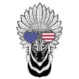 Zebra Horse Wild animal wearing indiat hat. Wild animal wearing indiat hat with feathers Boho style vintage engraving illustration Image for tattoo, logo, badge Royalty Free Stock Photo