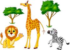 Wild animals 1 Royalty Free Stock Photo