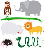 Wild animals Stock Photography