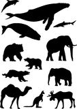 Wild animals. Silhouette collection isolated on the white Stock Photography