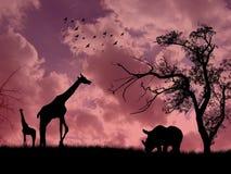 Wild animals Stock Image