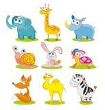 Wild animals Royalty Free Stock Image