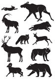 Wild animals. The figure shows the wild animals Stock Photo