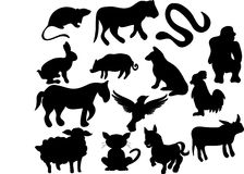 Wild animals. Vecto illustration of wild animals Stock Photography