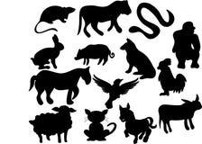 Wild animals. Vecto illustration of wild animals vector illustration