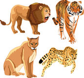 Wild Animals. Illustration of wild animals on white background Stock Photo