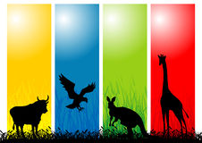 Wild Animals. Multicolor vector illustration Stock Photography