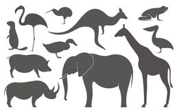 Wild Animals. Africa.  Silhouette Stock Photo