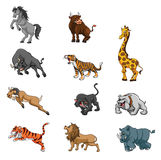Wild Animals Angry Set Group Stock Image