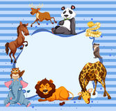 Wild animals around striped border Stock Images