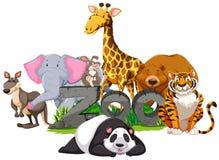 Wild animals around the zoo sign Royalty Free Stock Photo
