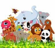 Wild Animals Background Stock Photography