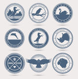 Wild animals badges Stock Images