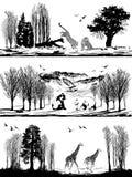 Wild animals (bear, giraffe, leopard) in different habitats. Vector set of illustration with wild animals (bear, giraffe, leopard) in different habitats Stock Photos