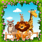 Wild animals behind the fence Royalty Free Stock Images