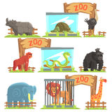 Wild Animals Behind The Shed In Zoo Set. Colorful Illustration With Outdoors Zoo In Vector Funky Stylized Design Royalty Free Stock Image