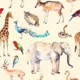 Wild animals and birds - zoo, wildlife - antelope, snake, deer, flamingo, other . Repeating pattern. Watercolor. Wild animals and birds - zoo, wildlife vector illustration