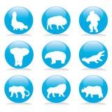 Wild animals button set Stock Photos