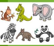 Wild animals cartoon set Royalty Free Stock Photo