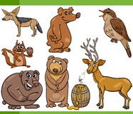 Wild animals cartoon set illustration Royalty Free Stock Photo