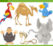 Wild animals cartoon set illustration Royalty Free Stock Photo