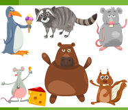 Wild animals cartoon set illustration Royalty Free Stock Images