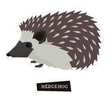 Wild animals collection Hedgehog Geometric style Royalty Free Stock Images