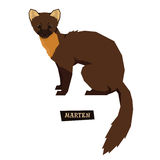Wild animals collection Marten Geometric style Royalty Free Stock Photography