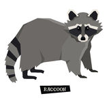 Wild animals collection Raccoon Geometric style Royalty Free Stock Photos