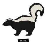 Wild animals collection Skunk Geometric style Royalty Free Stock Photos