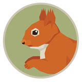 Wild animals collection Squirrel Geometric style icon round Royalty Free Stock Image