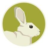 Wild animals collection White hare Geometric style icon round Stock Photo