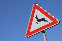 Wild animals crossing Royalty Free Stock Image