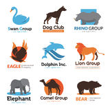 Wild Animals Flat Emblems Collection. Animals symbols flat logo collection with eagle bear camel and dog club emblem abstract  vector illustration Royalty Free Stock Image
