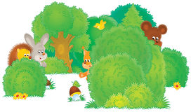 Wild animals in a forest royalty free stock image