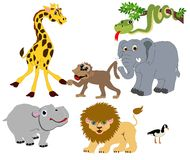 Wild Animals illustrations Isolated for many usage. There is a lion, hippo, elephant, monkey, snake, giraffe and a Canadian goose illustrations Stock Images