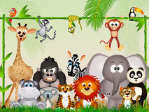 Wild animals in the jungle Royalty Free Stock Image