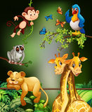Wild animals living in the forest Stock Image