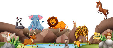 Wild animals by the pond. Illustration Royalty Free Stock Photo