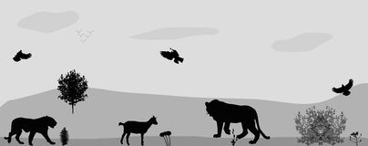 Wild Animals on the Prowl. Vector Illustration. Royalty Free Stock Photography