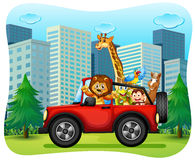 Wild animals riding on red jeep Royalty Free Stock Photography