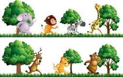 Wild animals running in the field Stock Image