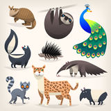Wild animals from savanah, desserts and woods. Colorful cartoon animals from different regions and places Stock Photo