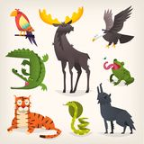 Wild animals from savanah, desserts and woods. Colorful cartoon animals from different regions and places of the world. Isolated vector illustrations Stock Images
