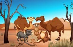 Wild animals in the savanna field. Illustration vector illustration